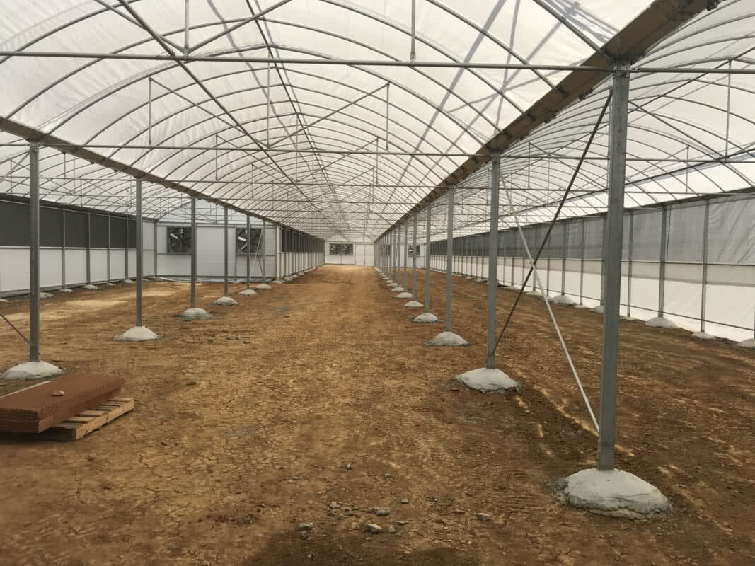 Overhead screen propagation commercial greenhouse structure