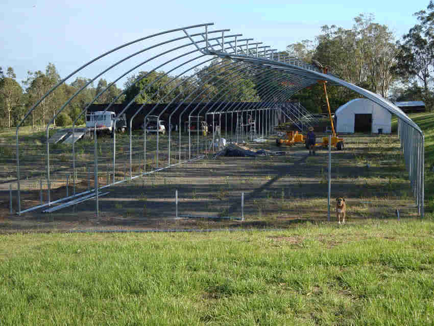 greenlife structures 12 metre sawtooth greenhouse