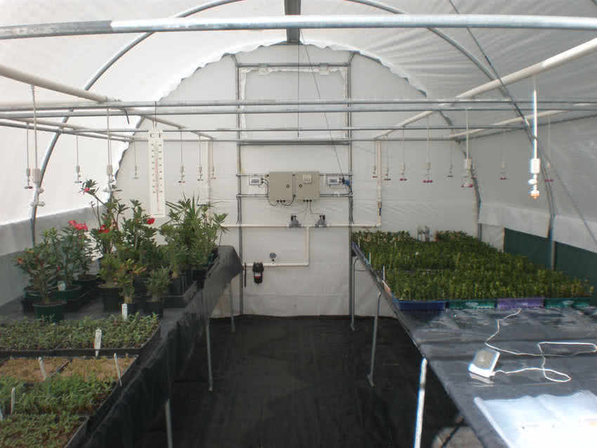 greenlife structures 4 metre habitat greenhouse