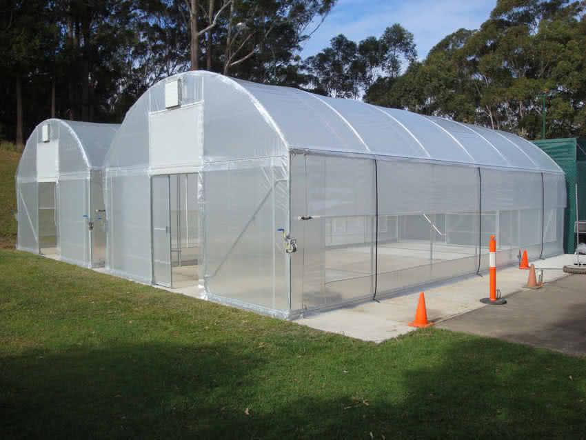 greenlife structures 6 metre habitat greenhouse