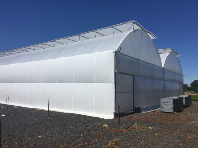 greenlife structures gullwing greenhouse