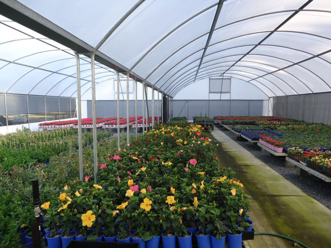 GreenLife Structures commercial multispan greenhouse with benches and irrigation and solarweave cover