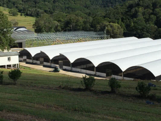 GreenLife Structures multi-bay habitat and sawtooth vented commercial greenhouses