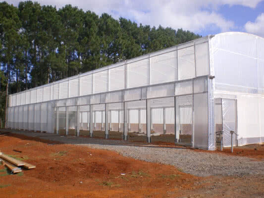 GreenLife Structures extra height roof vented Greenhouse with solarweave roll up curtains from GreenLife Structures