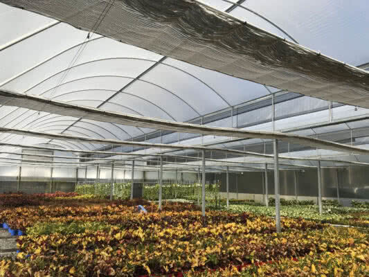 GreenLife Structures sawtooth greenhouse with retractable climate control screens and air vents