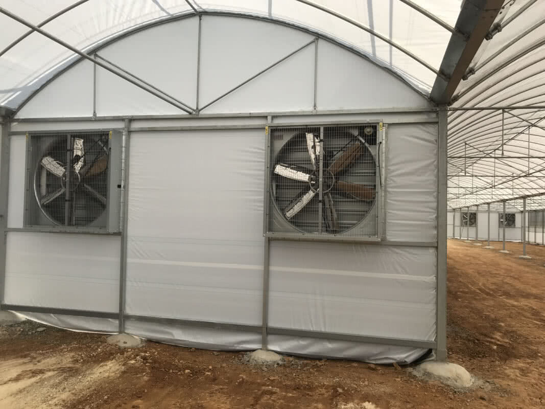 GreenLife Structures' climate control propagation greenhouse with overhead screens