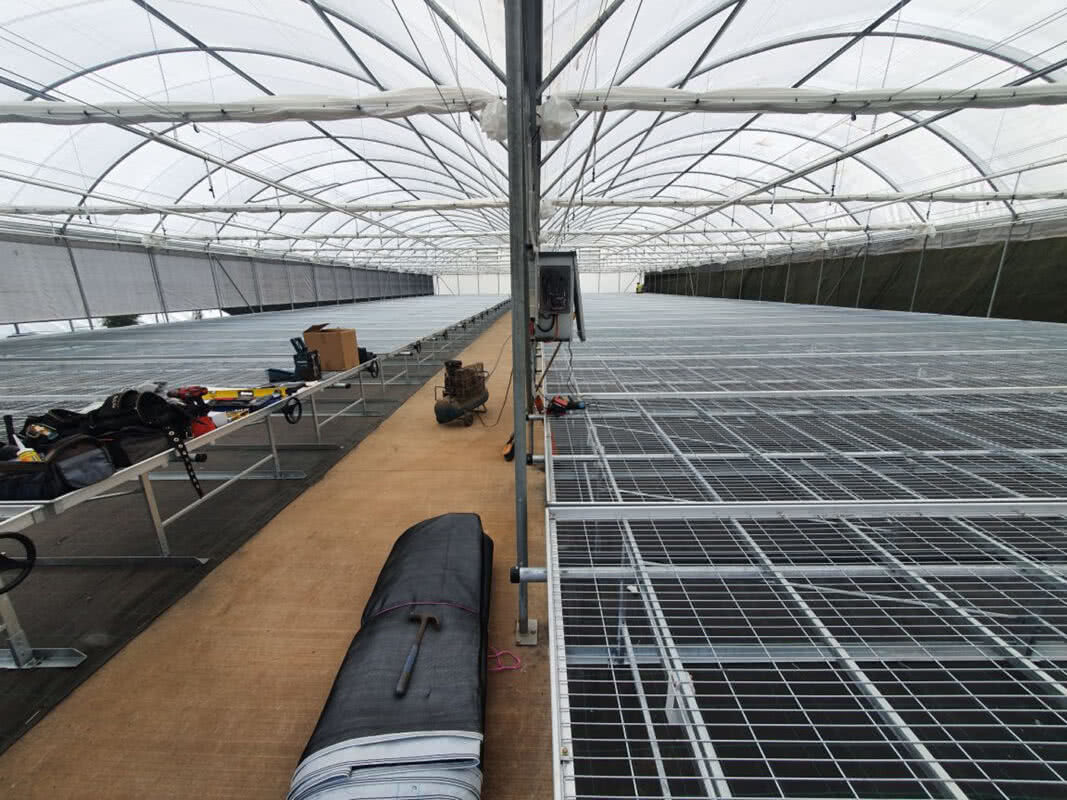 GreenLife Structures rolling nursery benches in habitat greenhouse with reflective ceiling screens and roll up wall curtains