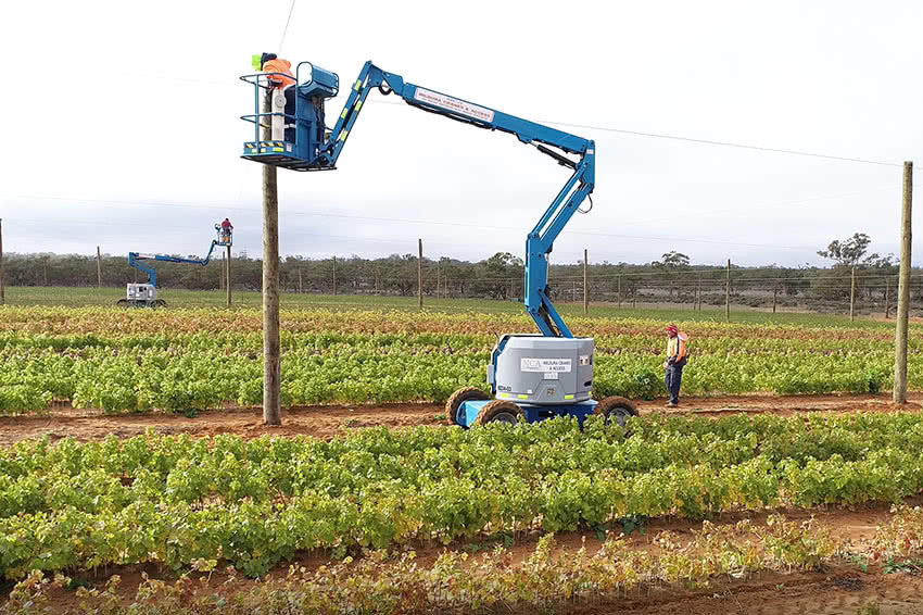 10 hectare citrus weather protection installation